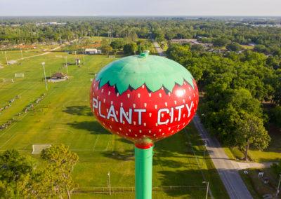 Plant City 1